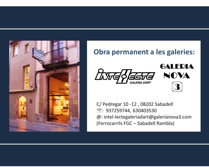 Obra permanent a Galeries Intel·lecte i Nova3